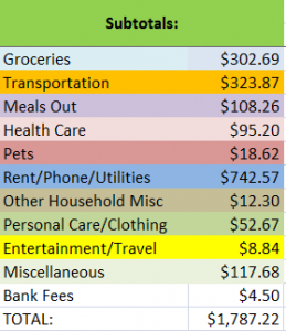 Expenses for January 2011