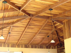 RES60-Tom-R.-150000-Wood-Ceiling