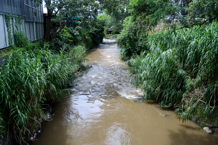 Untreated runoff from businesses and homes and untreated sewage are the leading causes of pollution in San José's Río Torres. Alberto Font/The Tico Times