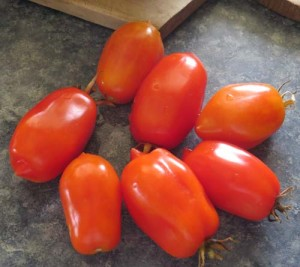 Roma tomatoes from my garden