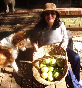 Maria with our chayote harvest in South Carolina. The collie next to Maria is named (appropriately) Pumpkin. We brought Pumpkin with us to Costa Rica and he watches me garden here.